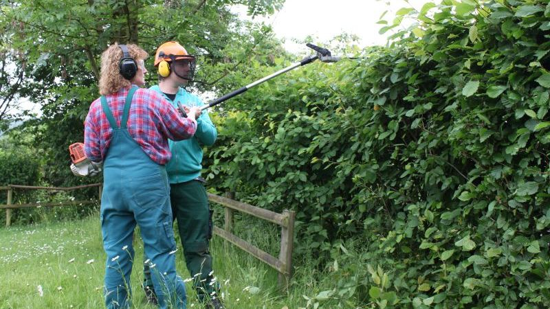 Garten und landschaftspflege arbeitsbereich johanneswerk for Garten und landschaftspflege